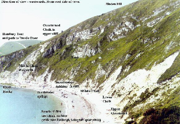 Chalk of the northern part of Lulworth Cove, Dorset, in 2002