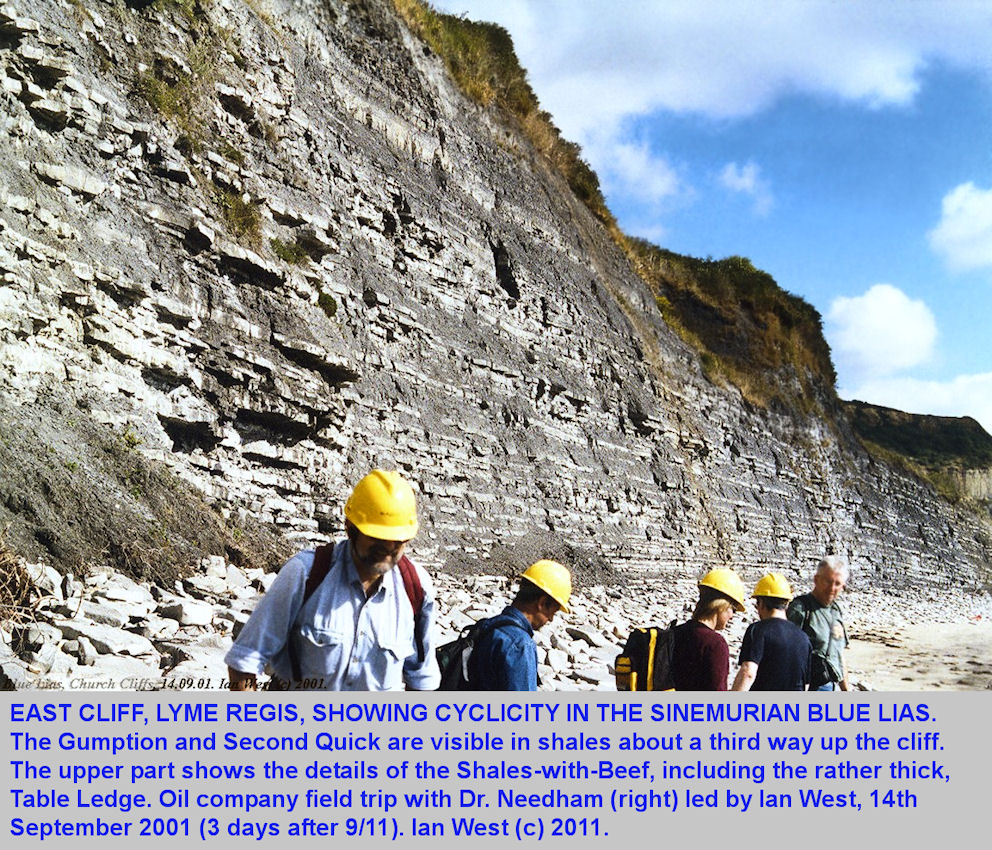 Cycles in the Sinemurian Blue Lias, East Cliff, Lyme Regis, Dorset, 14th September 2001, Agip UK, with Dr Needham, adjusted photograph