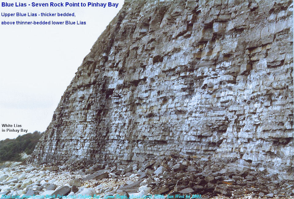 The Blue Lias, seen when entering Pinhay Bay at Seven Rock Point, west of Lyme Regis, Dorset, 2001