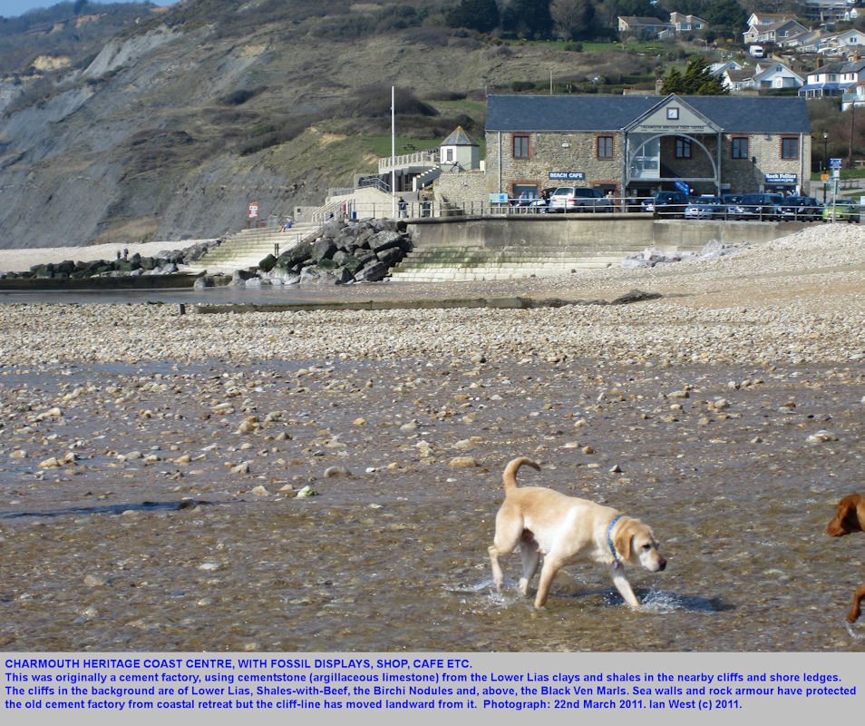 Charmouth Coastal Heritage Centre, Charmouth, Dorset, March 2011