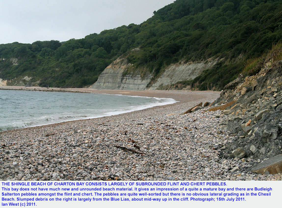 Beach of flint and chert pebble, subrounded, Charton Bay, west of Lyme Regis, July 2011