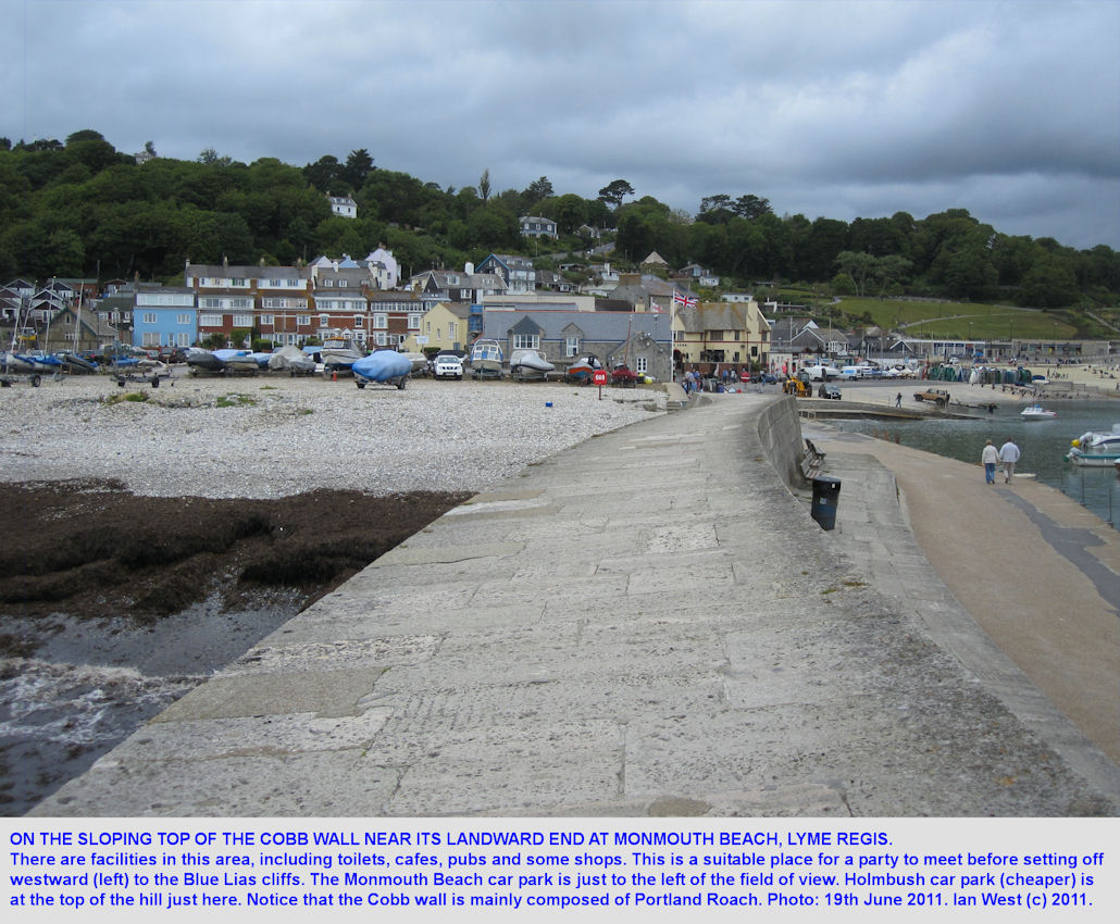 Starting at the Cobb at the eastern end of  Monmouth Beach, Lyme Regis, Dorset, 2011