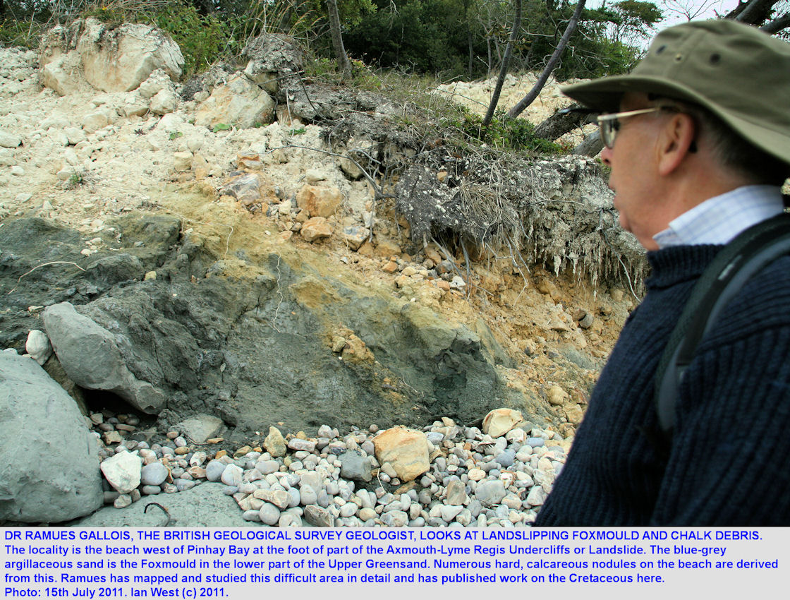 Dr. Ramues Gallois looks at Foxmould and Chalk debris in the Axmouth-Lyme Regis Undercliffs landslip, west of Pinhay Bay, east Devon