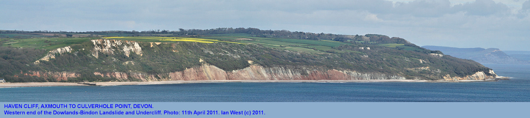 Haven Cliff, Axmouth to Culverhole Point, Devon, 2011