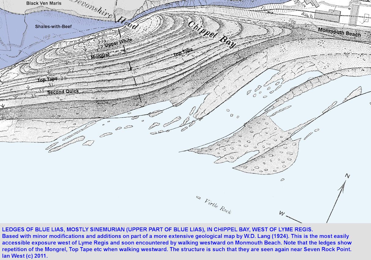 A geological map of the Blue Lias ledges at Chippel Bay and Devonshire Head, west of Lyme Regis, based on Lang, 1924