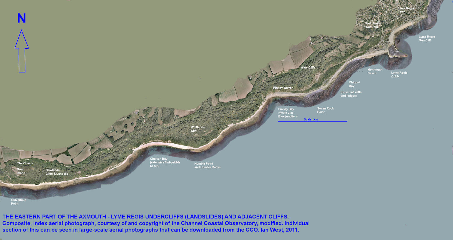 Small-scale, composite aerial photograph of the cliffs and landslide west of Lyme Regis, to Goat Island, courtesy of the Channel Coastal Observatory