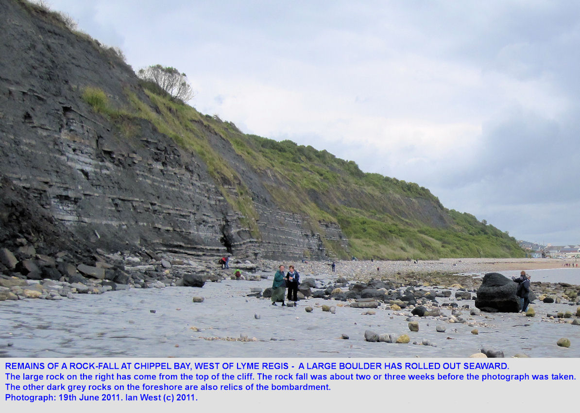 A large rock has rolled out from a rock-fall towards the western end of Monmouth Beach, Chippel Bay, Lyme Regis, Dorset, 2011