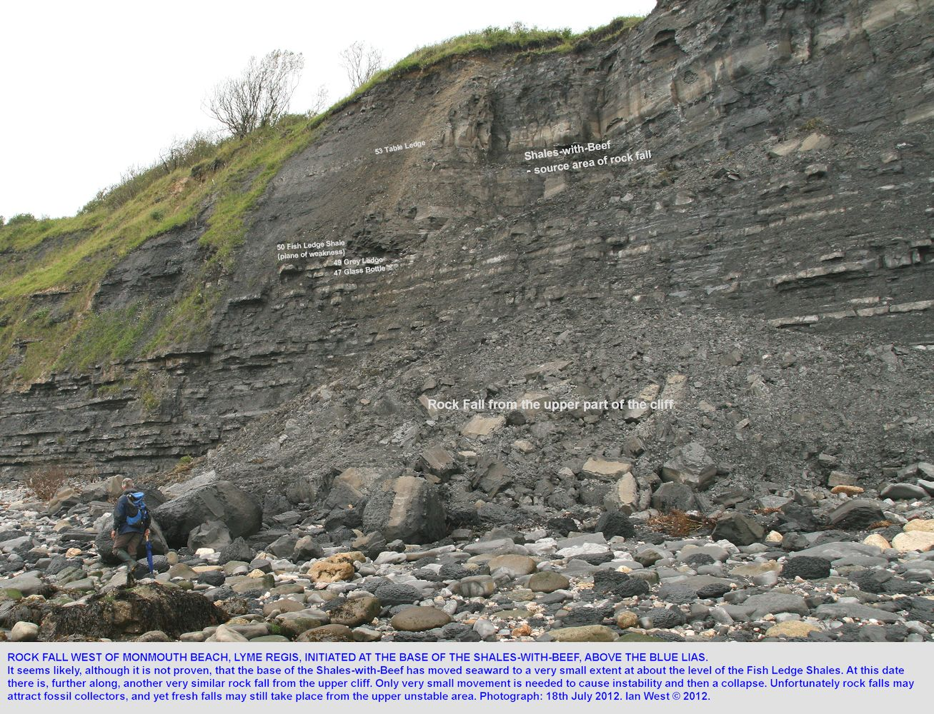 A rock fall from the Shales-with-Beef, above the Blue Lias, west of Monmouth Beach, Lyme Regis, Dorset, 18th July 2012