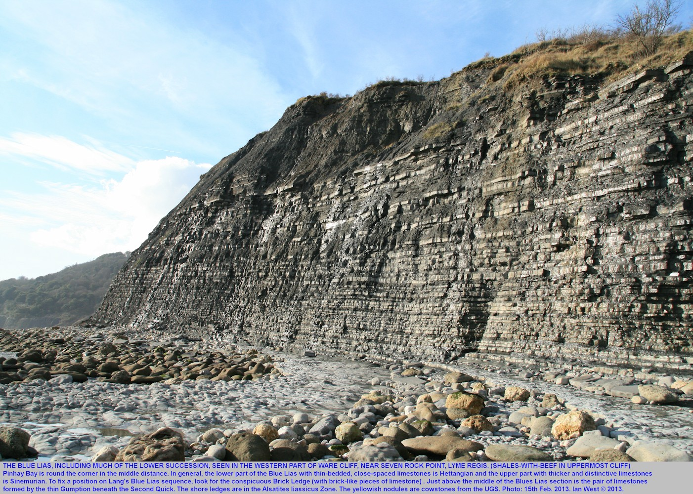 A major sequence of the Blue Lias with both Hettangian and Sinemurian strata, Ware Cliff near Seven Rock Point, west of Lyme Regis, Dorset