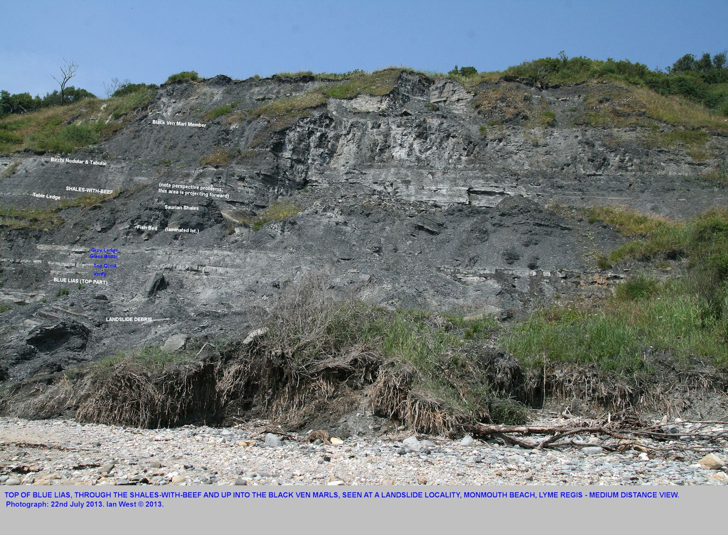 A medium distance view of the top of the Blue Lias, the Shales-with-Beef and the basal part of the Black Ven Marls, at a landslide, Monmouth Beach, Lyme Regis, Dorset, 22nd July 2013