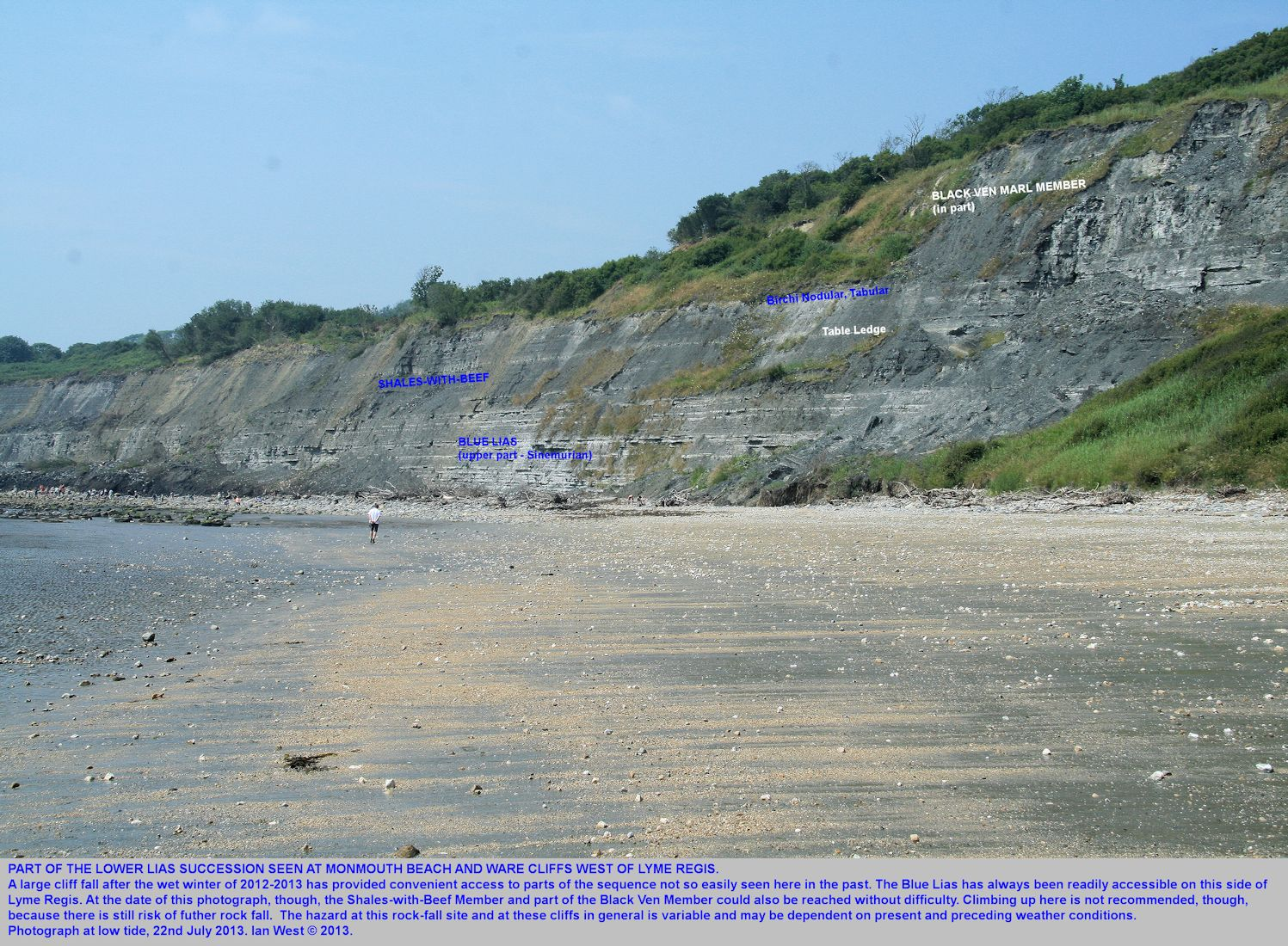 A general view of the upper part of the Blue Lias, overlain by the Shales-with-Beef, and part of the Black Ven Marl Member, above, Monmouth Beach, west of Lyme Regis, Dorset, 22nd July 2013