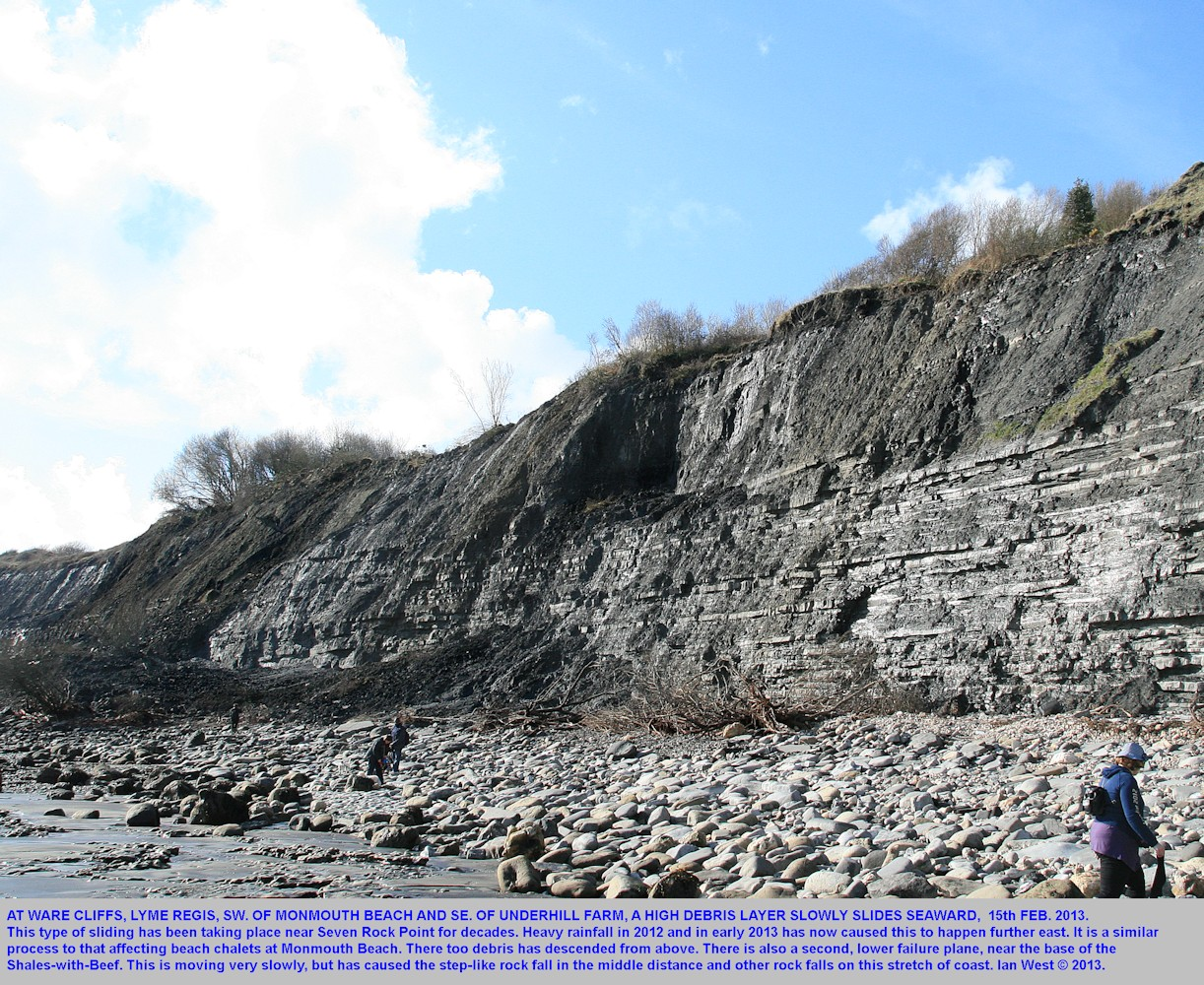A new phase of landsliding at Ware Cliffs to Monmouth Beach, Lyme Regis, Dorset, February 2013