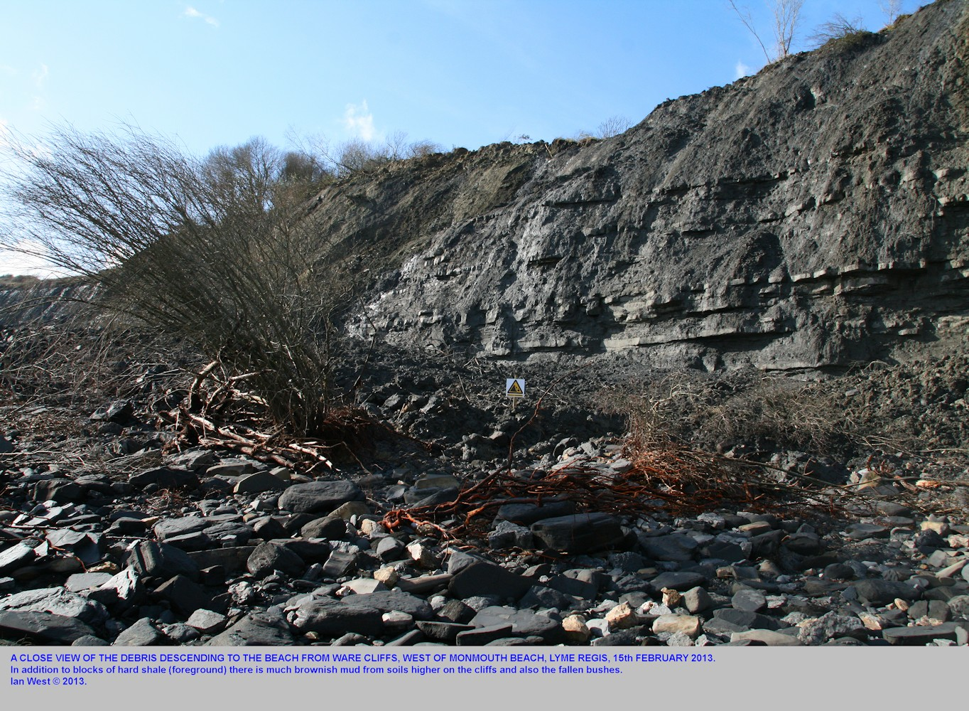 A closer view of the fall of mud, rock and bushes at Ware Cliffs, southwest of Monmouth Beach, Lyme Regis, Dorset, February 2013
