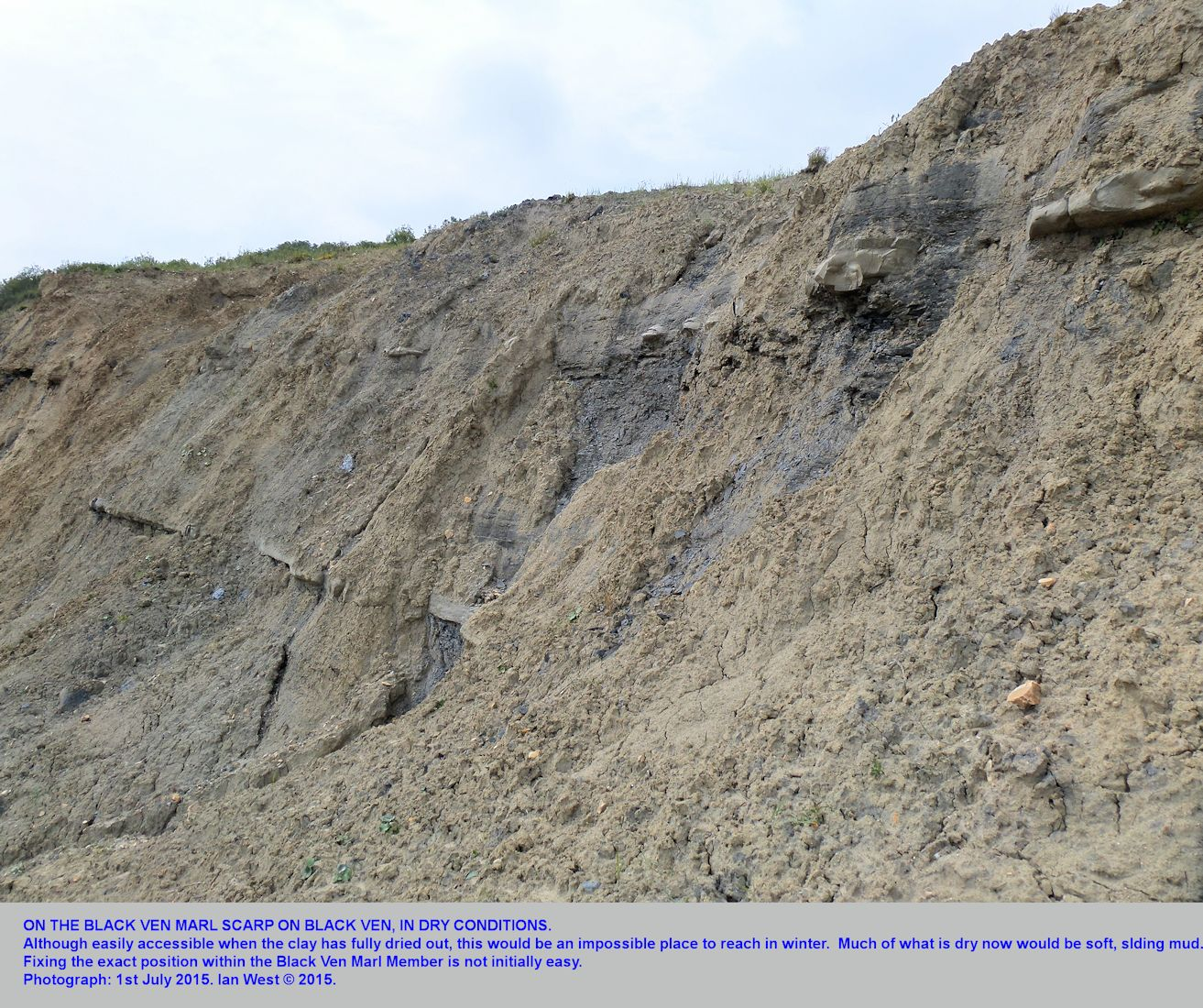 The Black Ven Marl Scarp on central Black Ven, east of Lyme Regis, Dorset, a general view with nodules and a limestone bed, 1st July 2015
