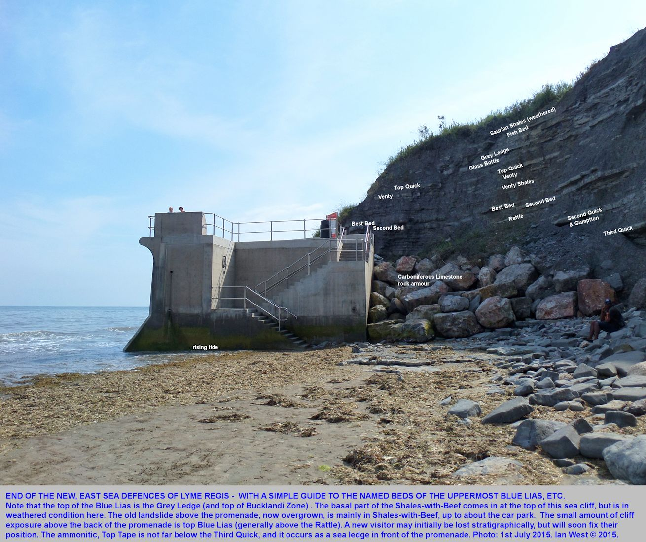The named beds of the upper part of the Blue Lias at the end of the east sea defences and new promenade, Lyme Regis, Dorset, 1st July 2015, with rising tide