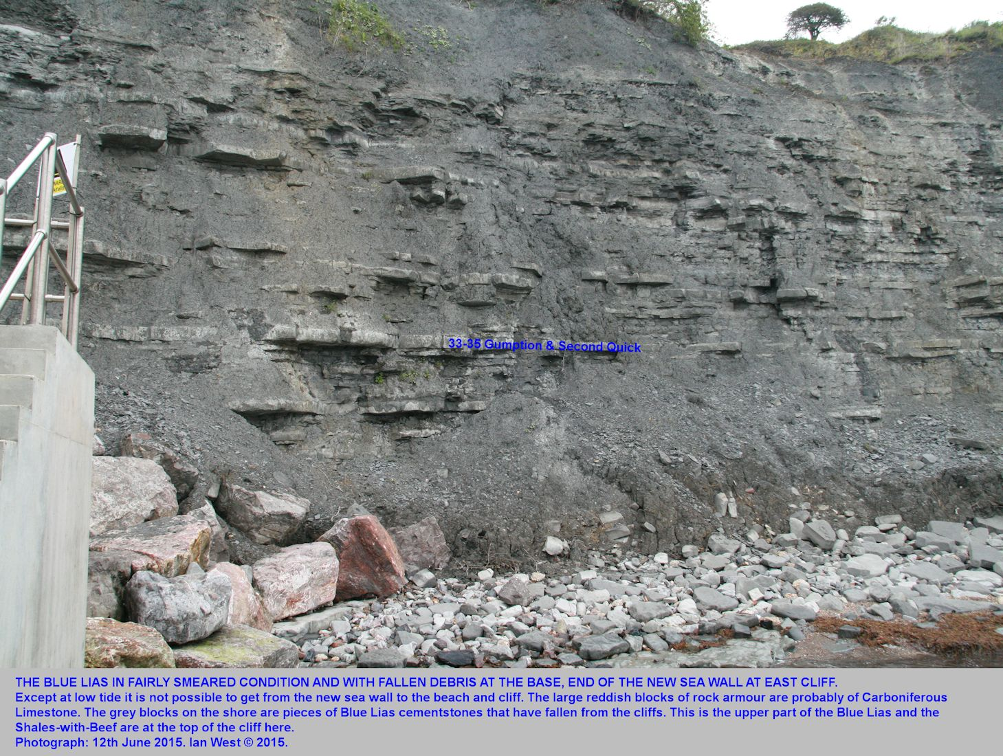 East Cliff of Blue Lias, at the end of the new, north-eastern sea wall, Lyme Regis, Dorset, with the Gumption and Second Quick named as marker horizons, June 2015