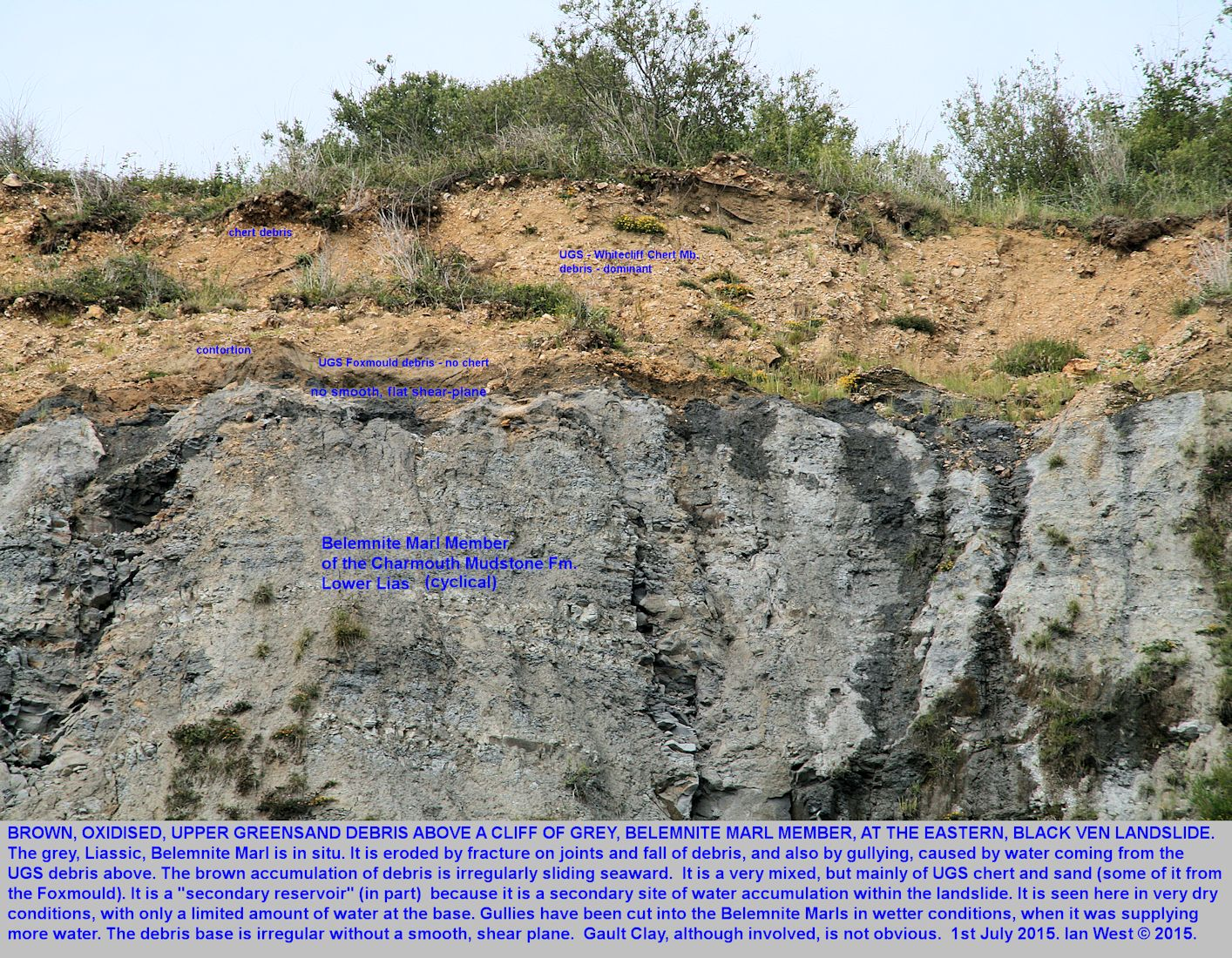 Disrupted, Upper Greensand debris above Liassic Belemnite Marl is, in part, a secondary reservoir for water that facilitates landsliding and mudsliding at Black Ven, Dorset, details shown, 1st July 2015
