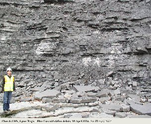 Church Cliffs, Lyme Regis,  Dorset - Blue Lias with fallen debris