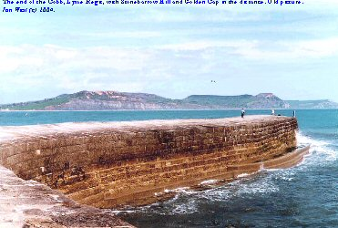 The end of the Cobb at Lyme Regis, Dorset