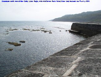 West of the Cobb, Lyme Regis, Dorset, towards Seven Rock Point