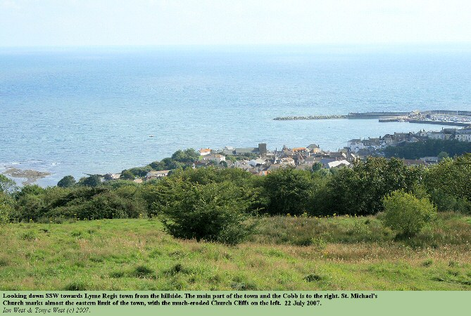 The town of Lyme Regis, Dorset, seen from the hillslope to the north-north-east