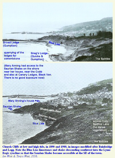 Church Cliffs in 1890 and 1900, showing the exposure of the Blue Lias and the Saurian Shales, Lyme Regis, Dorset