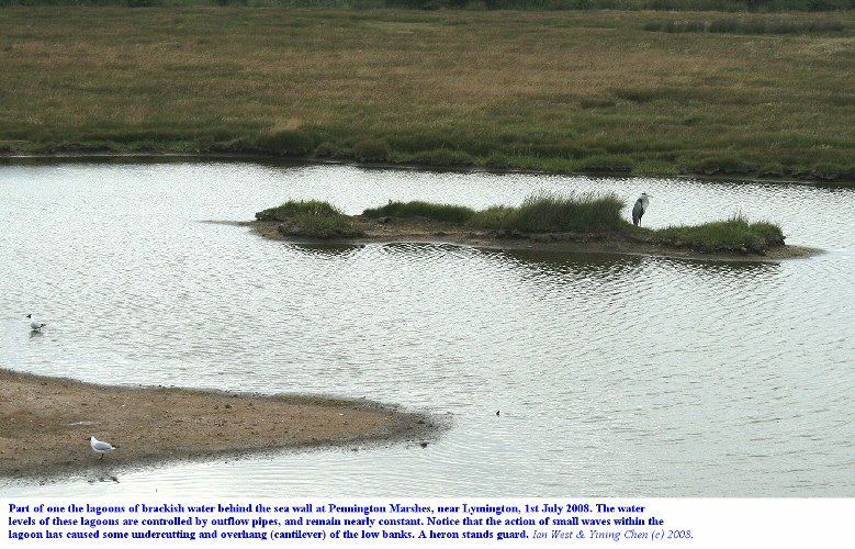 Part of a small, brackish lagoon on Pennington Marshes, with some cantilever erosion at the low banks, 1st July 2008