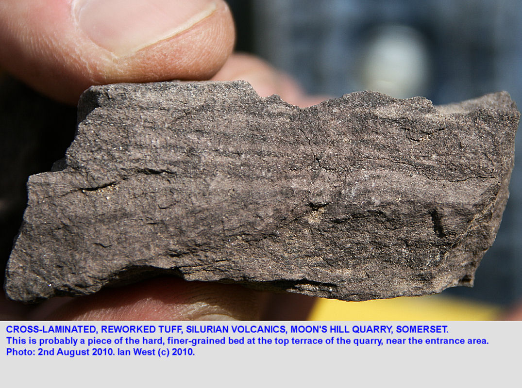 Cross-laminated, reworked tuff, Silurian volcanics, Moon's Hill Quarry, Mendip Hills, Somerset