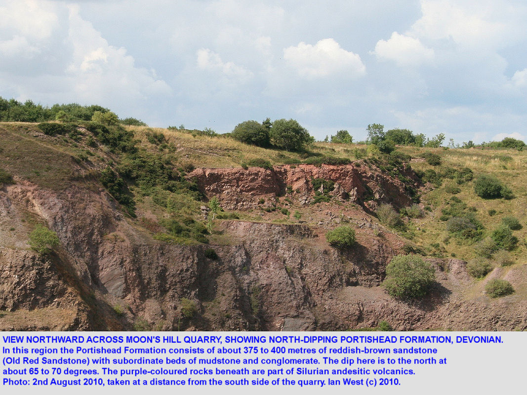Portishead Formation, Devonian, Moon's Hill Quarry, eastern Mendip Hills, Somerset, 2010