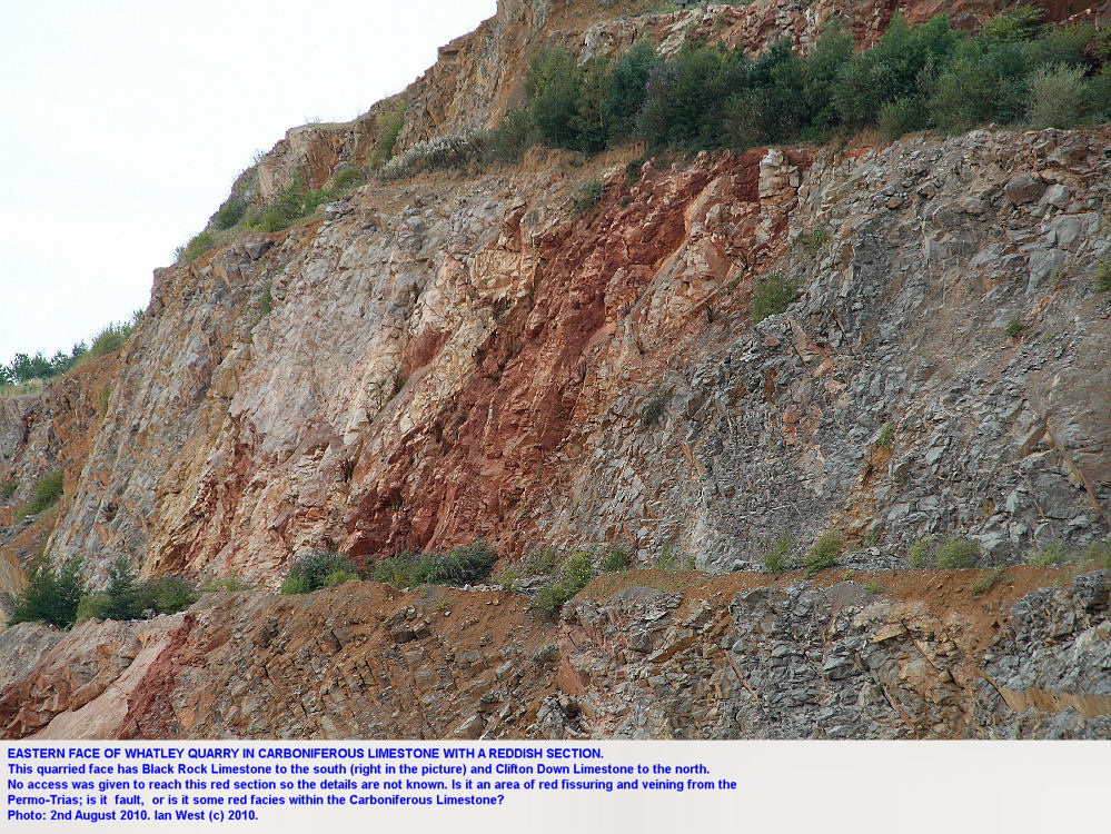 East face of Whatley Quarry, with a red unit, Mendip Hills, Somerset