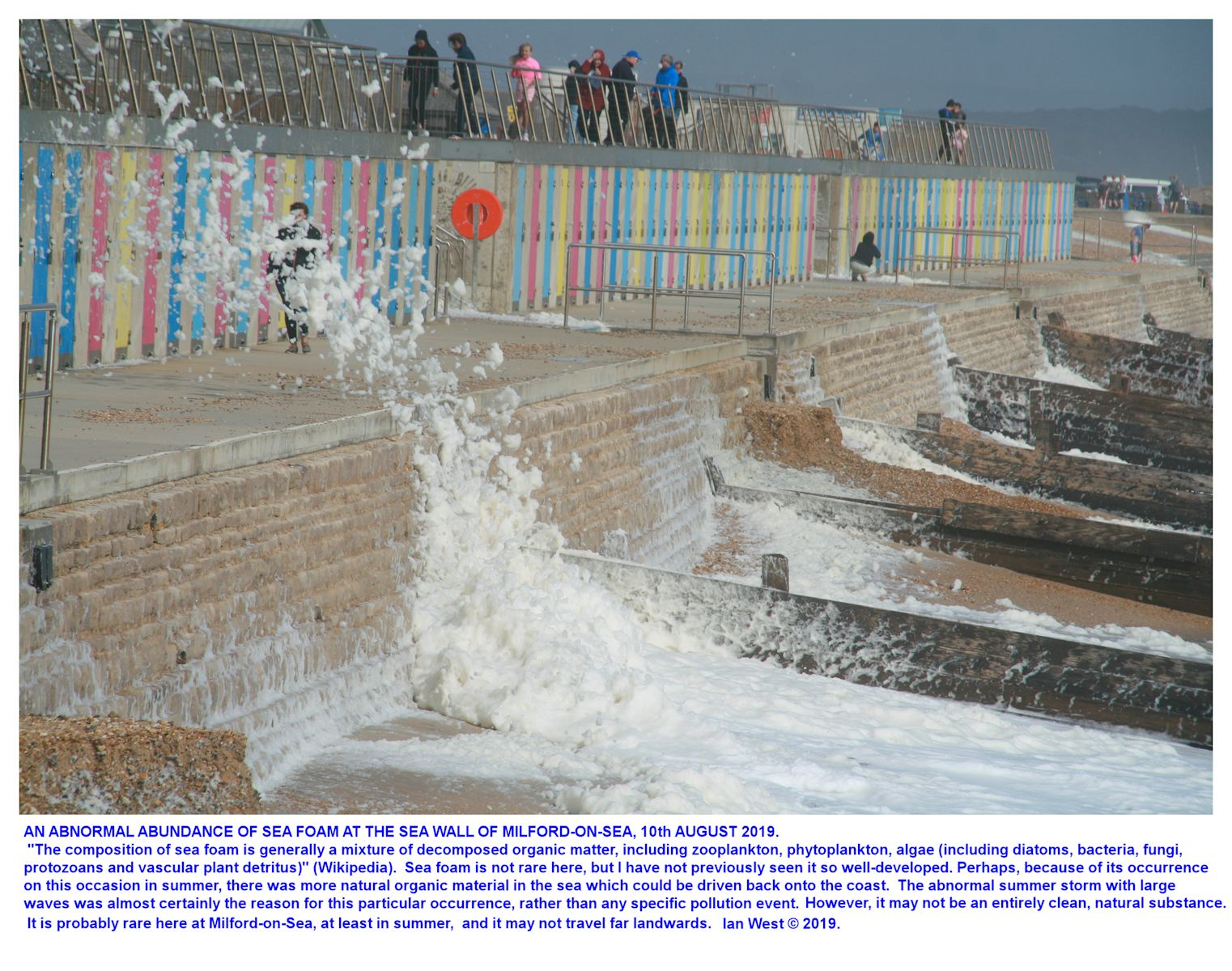 Sea foam or spume, a sea-surface, sea substance which, in some cases,<P> can contain organic pollutants, at the beach huts to the southeast of the White House, Milford, 10th August 2019