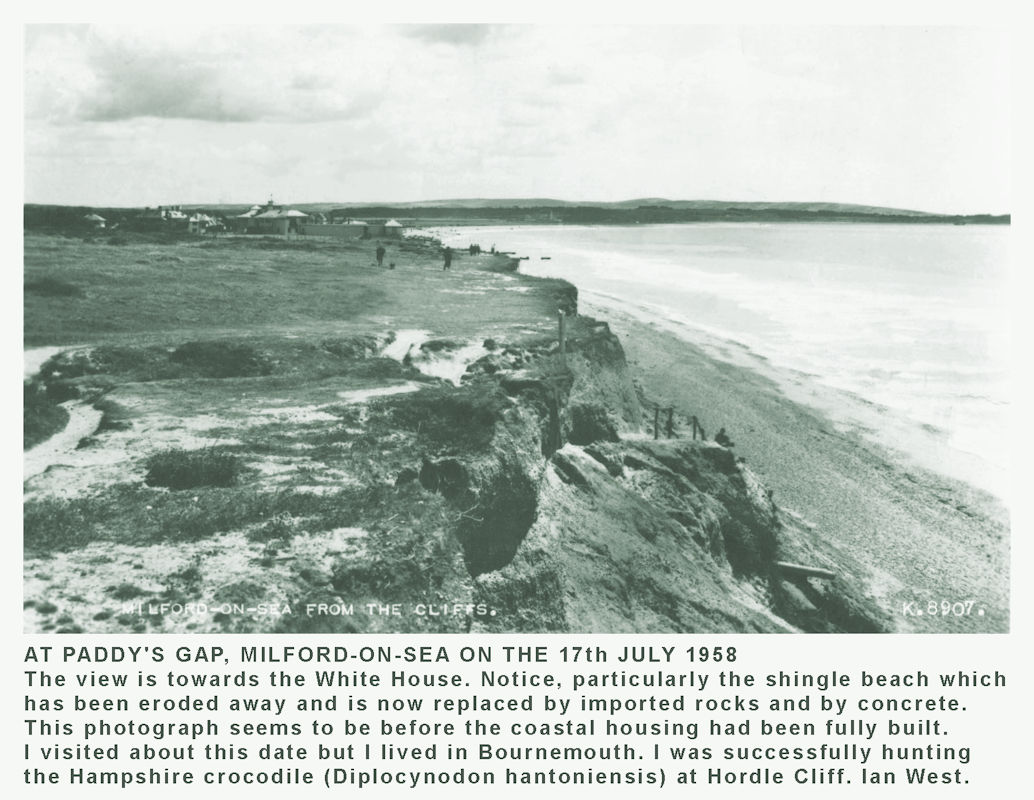 The cliff top at Paddy's Gap, Milford-on-Sea in 1958, looking ESE towards the White House, which was not very white at that date