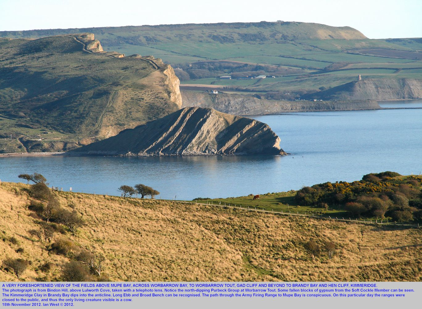 A foreshortened photograph from Bindon Hill, above Lulworth Cove, across Mupe Bay, Worbarrow Bay to Kimmeridge, Dorset, 2012