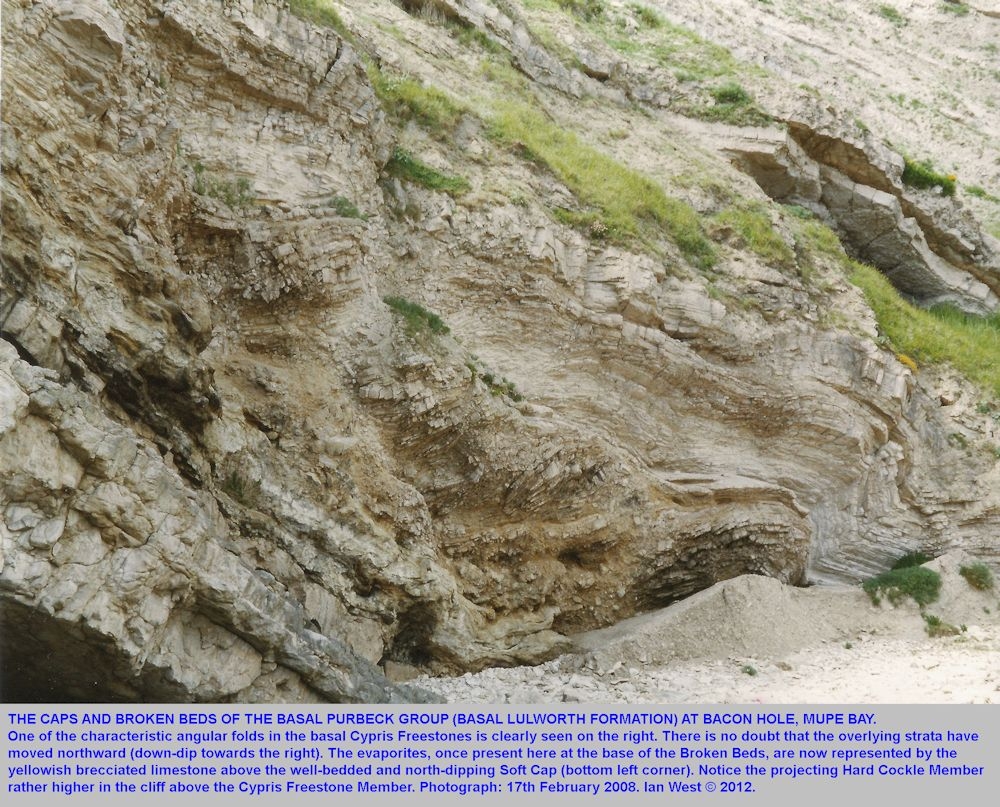 A general view of the Broken Beds from the shore near Smugglers's Cave, Mupe Bay, Dorset, 2002