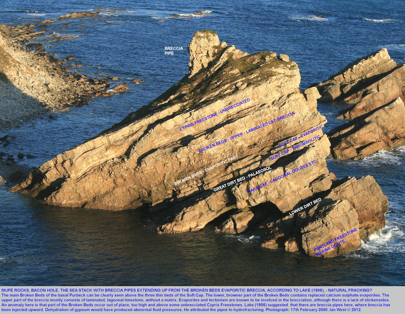 A breccia pipe of Lake (1986) in the basal Purbeck strata of a Mupe Rock, Mupe Bay, Dorset