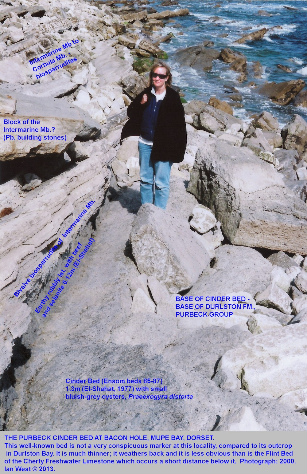 The Cinder Bed exposure at Bacon Hole, Mupe Bay, Dorset, 2000, with an American visiting geologist