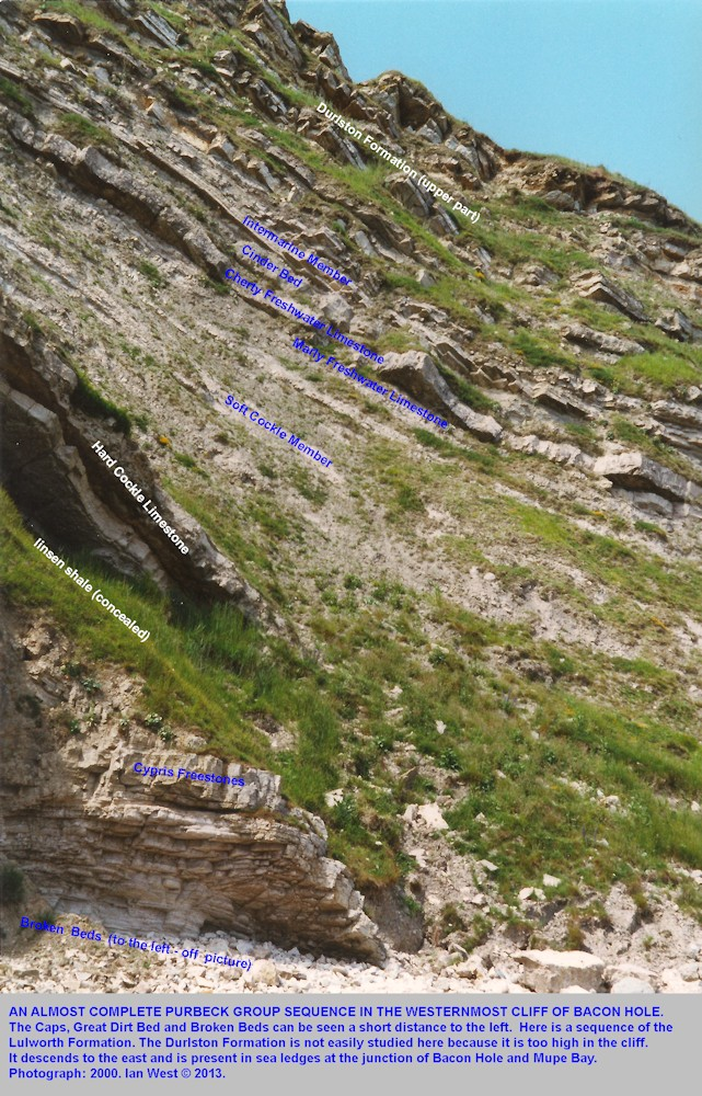 An extensive vertical sequence of the Lulworth and Durlston Formations of the Purbeck Group, western end of Bacon Hole, near Mupe Bay, Dorset