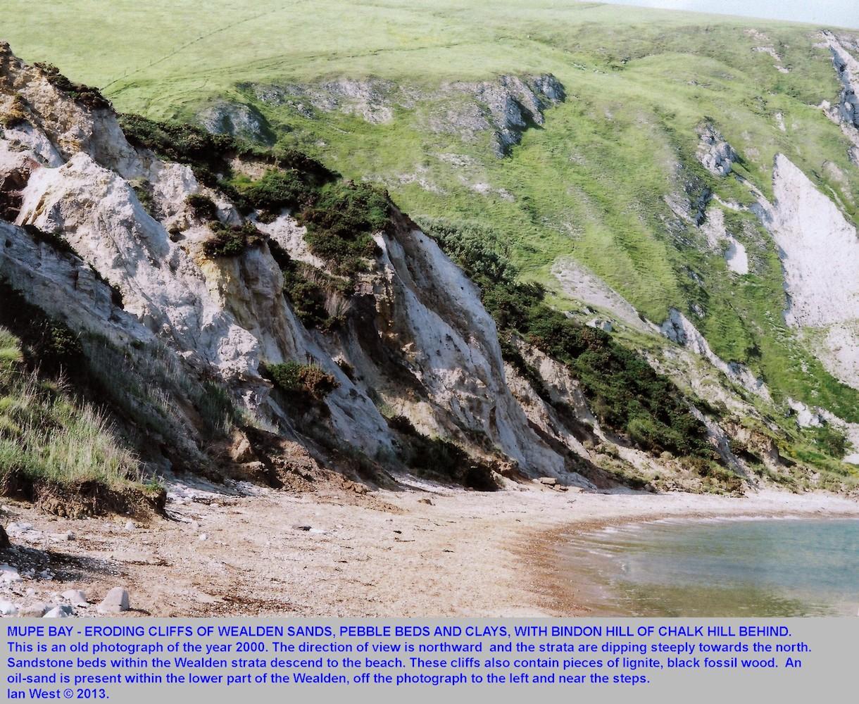 Wealden strata in Mupe Bay, Dorset, 2000