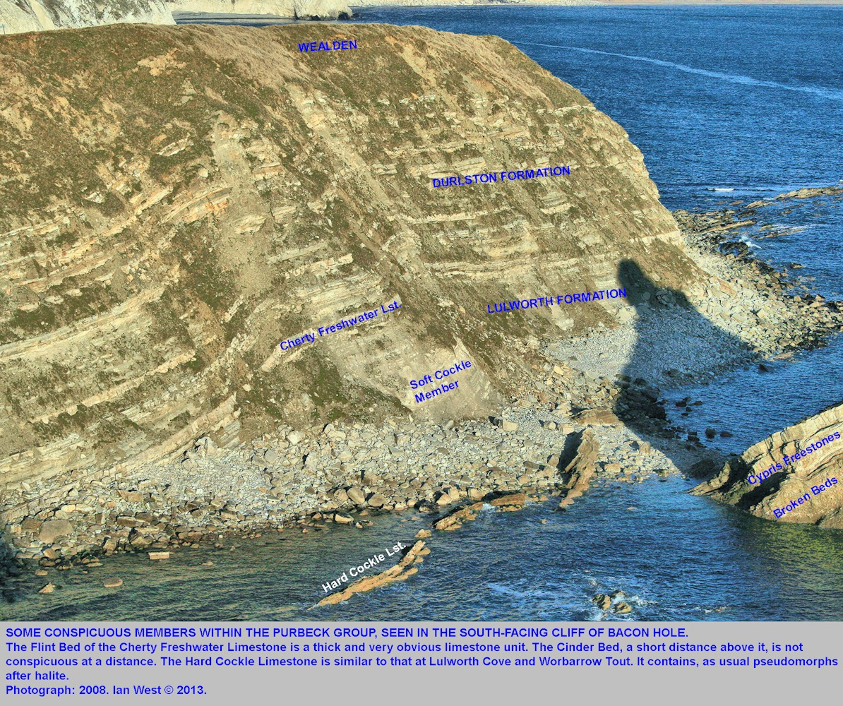 Part of the Purbeck stratal sequence in Bacon Hole, Mupe Bay, Dorset, with some conspicuous marker horizons indicated