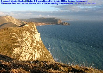 View of Worbarrow Bay from cliffs of Bindon Hill, above Mupe Bay