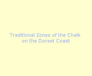 Traditional zones of the Chalk on the Dorset coast