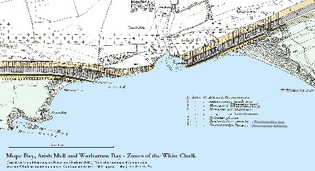 Map of zones of the White Chalk at Mupe Bay and Worbarrow Bay, Dorset