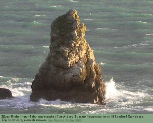 Stack towards eastern end of Mupe Rock, Mupe Bay, Dorset