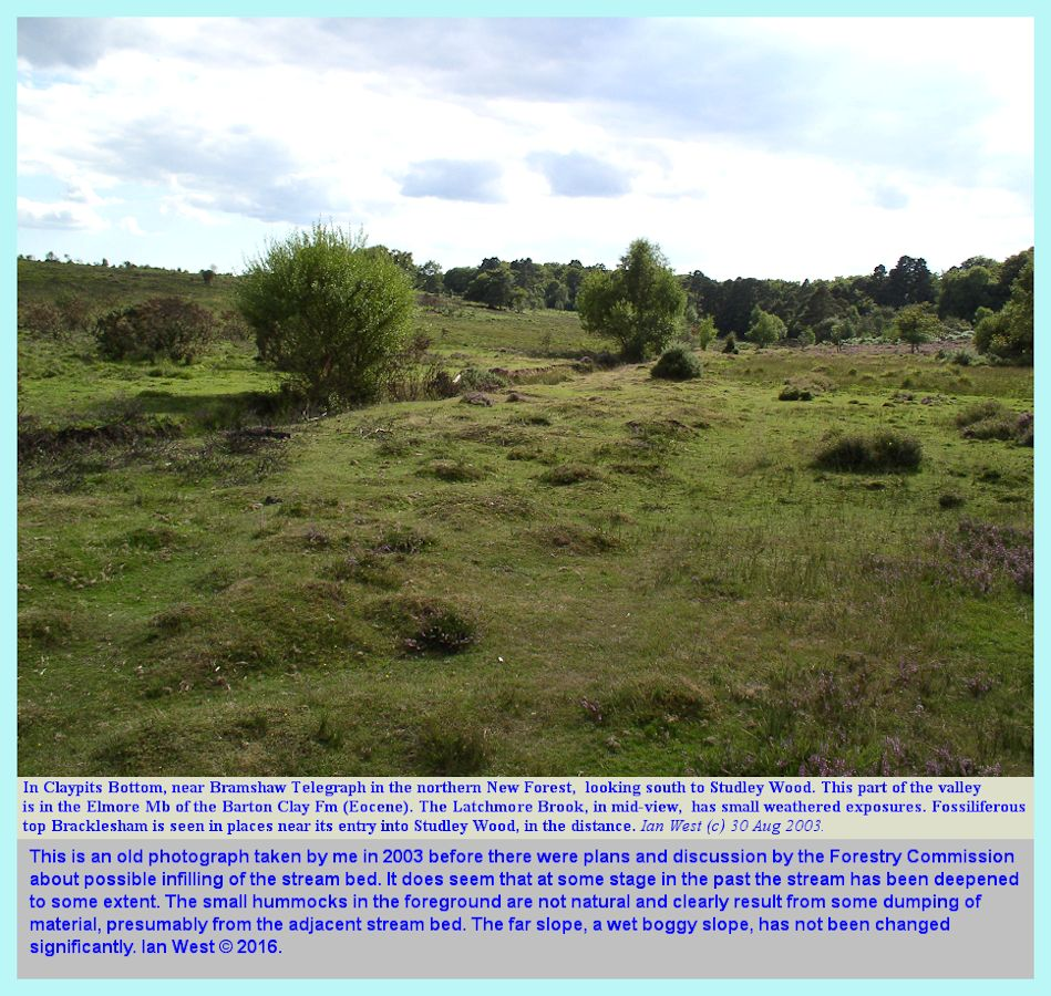 Claypits Bottom north of Studley Wood, New Forest, as seen in an old photograph from 2003, and showing relics of former work of deepening the stream