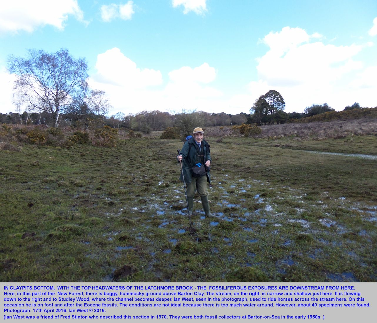 Ian West at Claypits Bottom, upstream from the Studley Wood, fossiliferous Eocene exposure, New Forest National Park, April 2016
