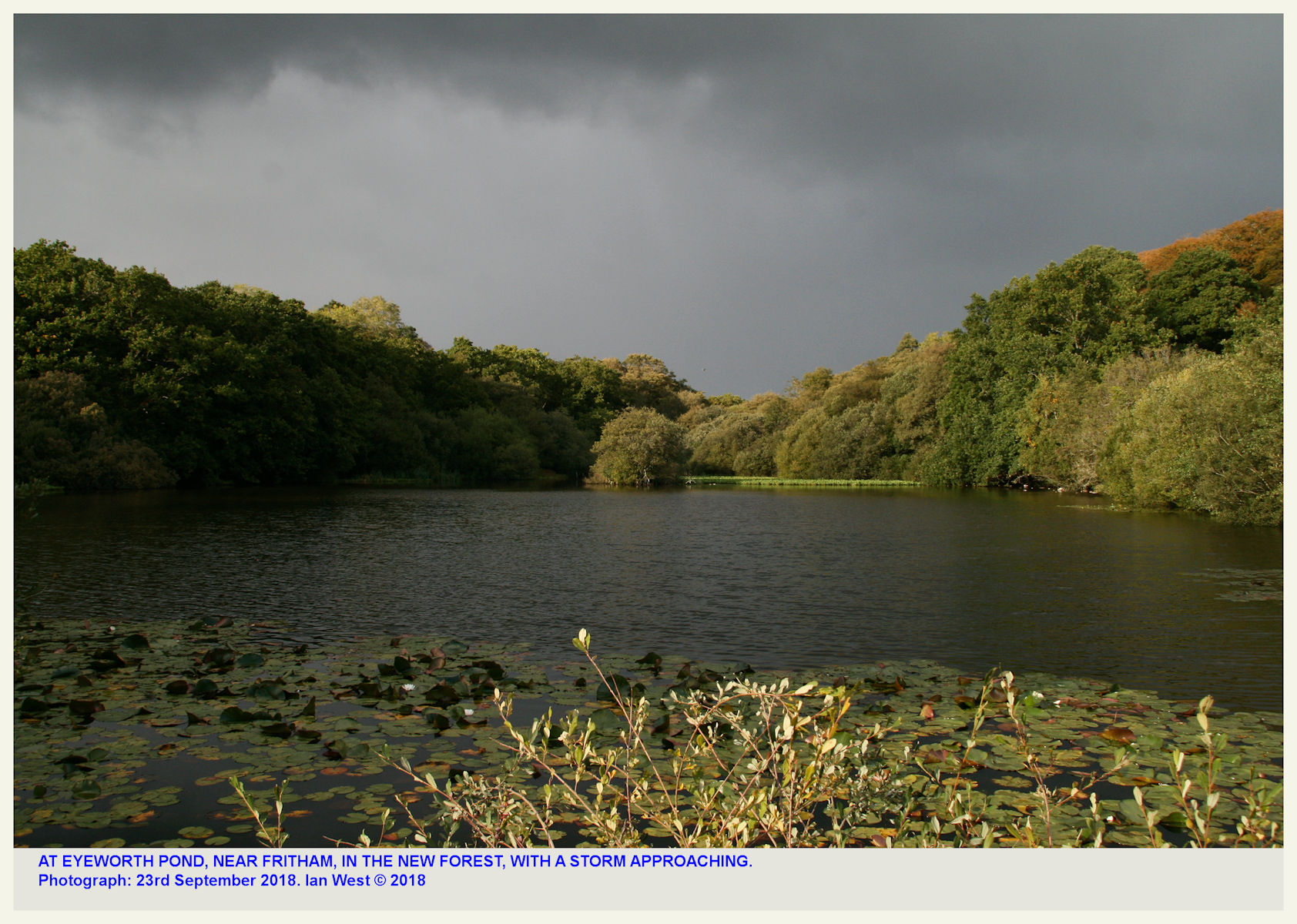 Eyeworth Pond, near Fritham, Hampshire, New Forest National Park, on the Eocene Selsey Formation, as photographed in stormy weather in the year 2018