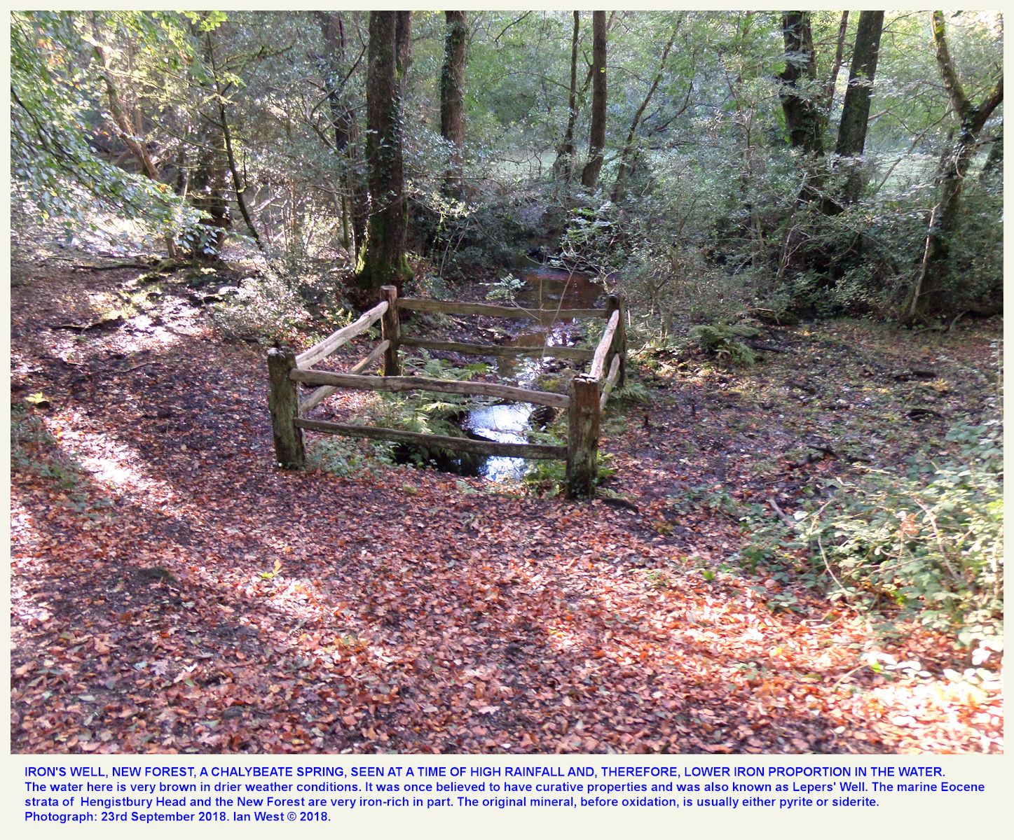 Iron's Well, near Fritham, New Forest, Hampshire, as seen after heavy rain and when the iron content of the water was low, 23rd September 2018