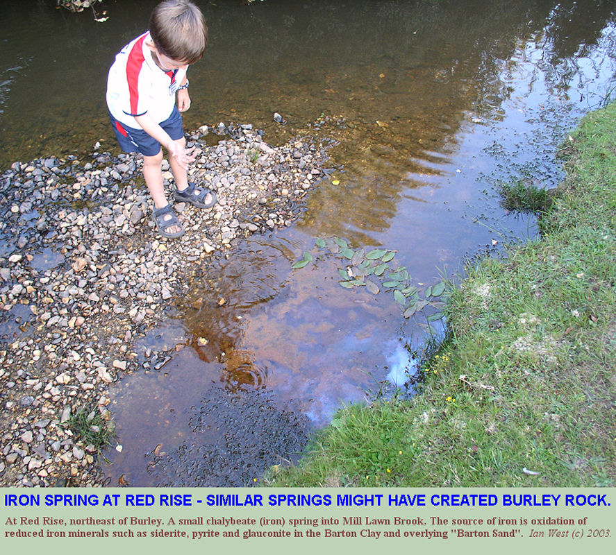 Chalybeate or iron spring at Red Rise, near Burley, New Forest, in 2003