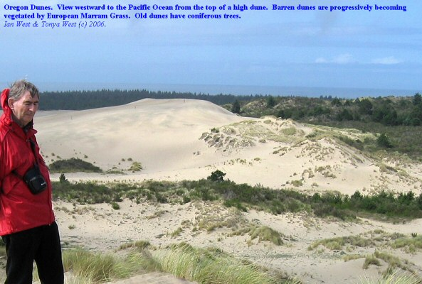 Oregon Dunes, view seaward from a high dune; colonization by European Marram Grass