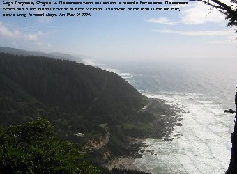 View down to coast from Cape Perpetua, Oregon